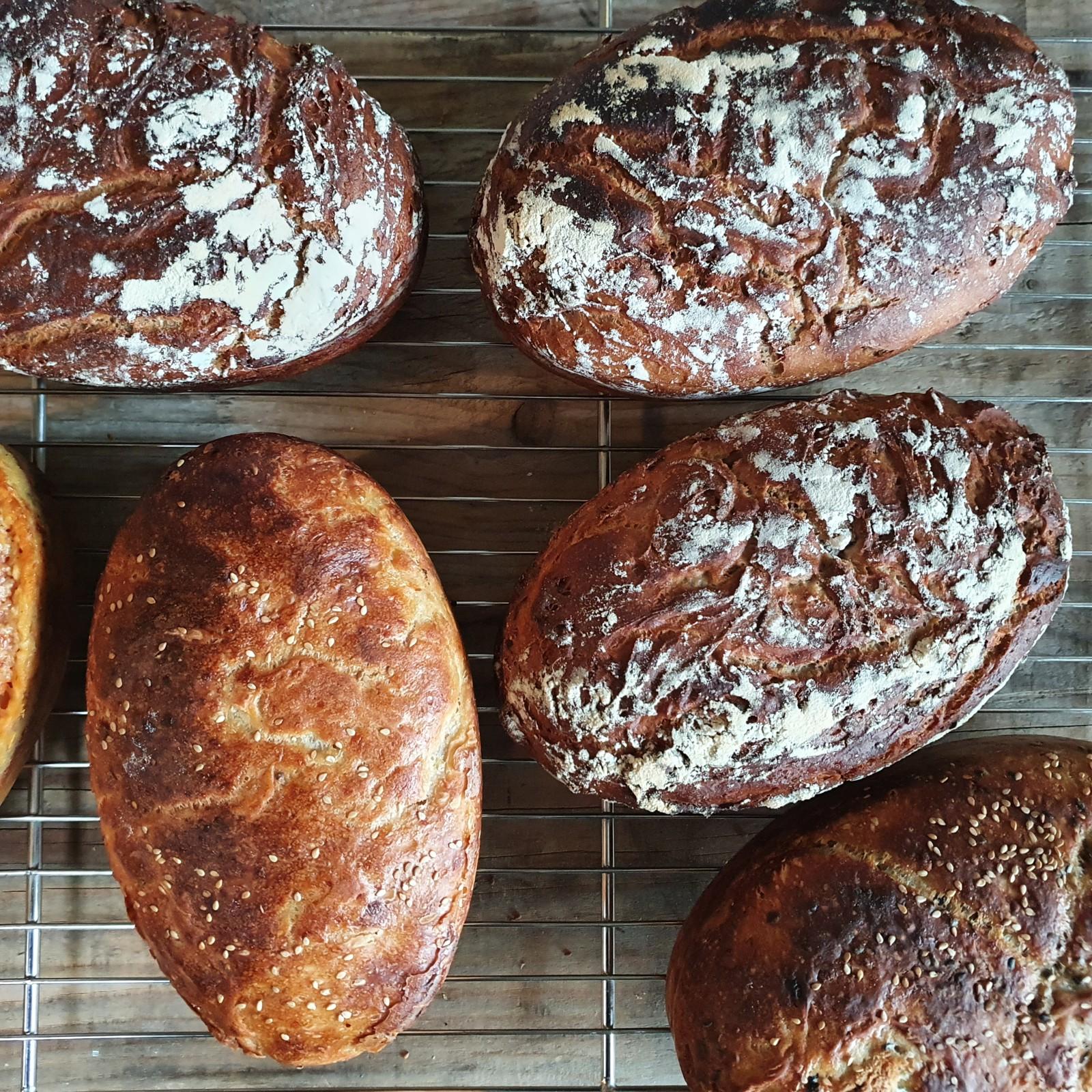 "Faszination ""Brot"" (erster Blogbeitrag)"